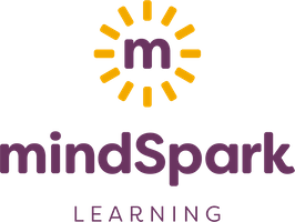 Design Thinking and Innovative Mindsets Institute