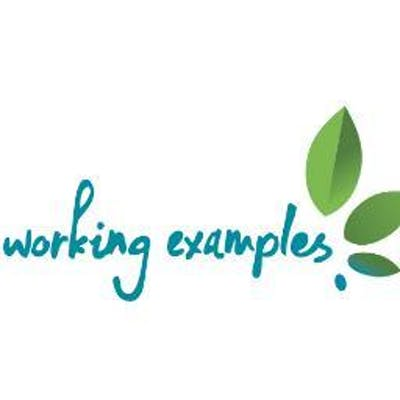 Working Examples