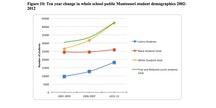 Ten-year change in whole school public Montessori student demographics