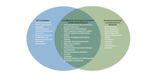 A model of the overlap between conditions for learning and social and emotional competencies with illustrative components
