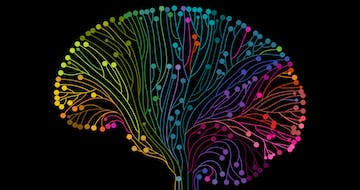 How to Improve Brain Function and Reverse Poverty's Impact on Student Learning