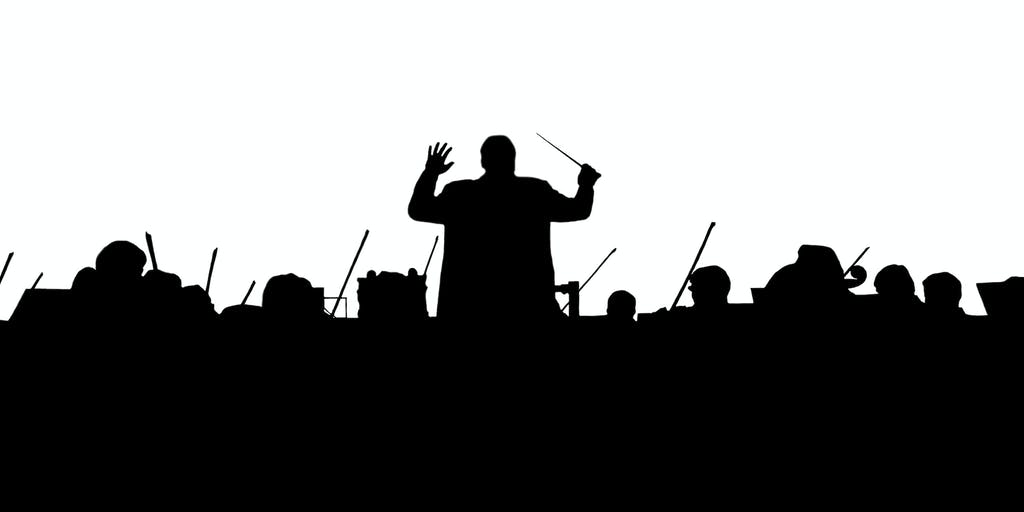 Image result for maestro conducting