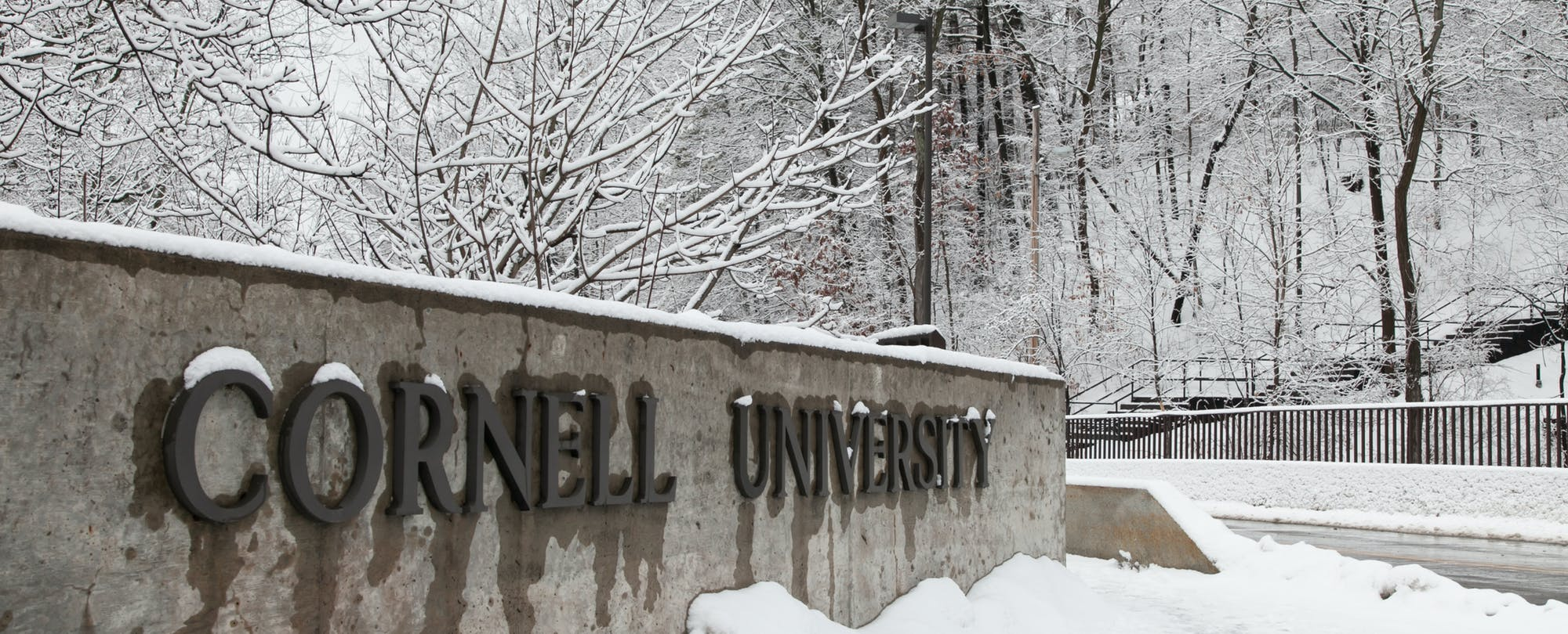 How Cornell University Diversified Its Incoming PhD Computer Science Student Body
