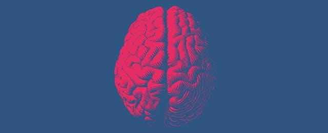 Whole Brain Teaching Is Weird — and Weirdly Viral