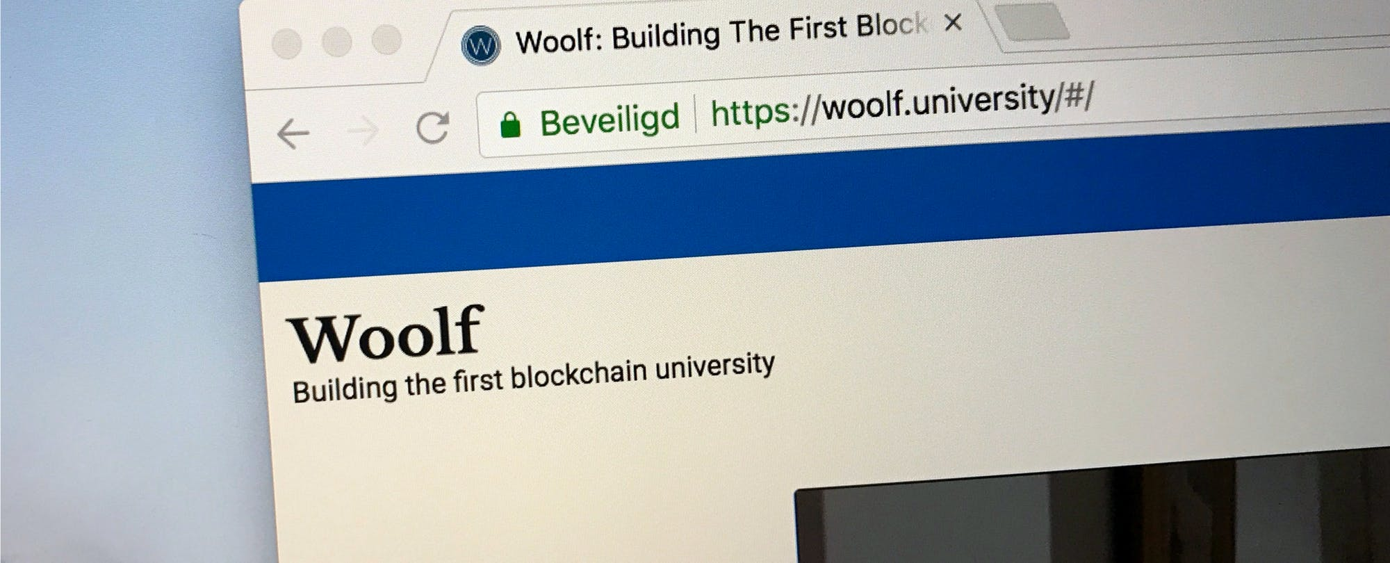 Academics Propose a 'Blockchain University,' Where Faculty (and Algorithms) Rule