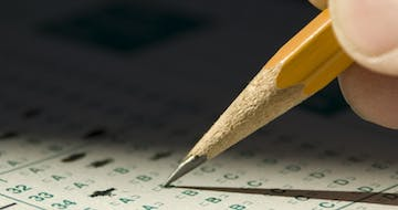 Is Assessment Ready to Move Beyond Standardized Tests? These MIT Researchers Think So.