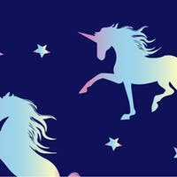 Chief Privacy Officers: The Unicorns of K-12 Education