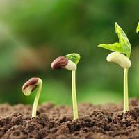 Career Karma Raises $1.5 Million Seed Round for Bootcamp Marketplace Focused on Peers