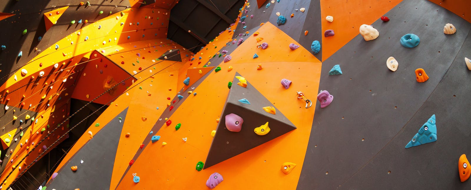 Colleges Should Build Online Programs, Not New Gyms and Climbing Walls