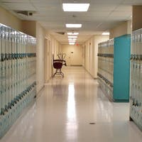 The Downsides of Closing Schools and Colleges in a Crisis
