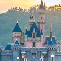 Pearson Taps Former Disney Executive Andy Bird as Next CEO