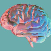 Forgetting Is a Feature, Not a Bug: How the Brain 'Grasps' New Concepts