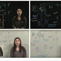 Do Instructional Videos Work Better When the Teacher is On Screen? It Depends.