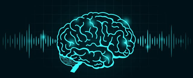What Can Teachers Learn From Students' Brainwaves?