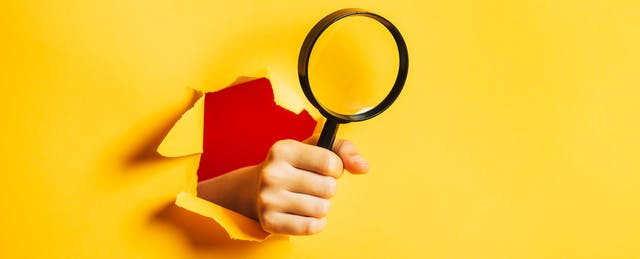 The Key to Detecting Misinformation? Your Own Curiosity