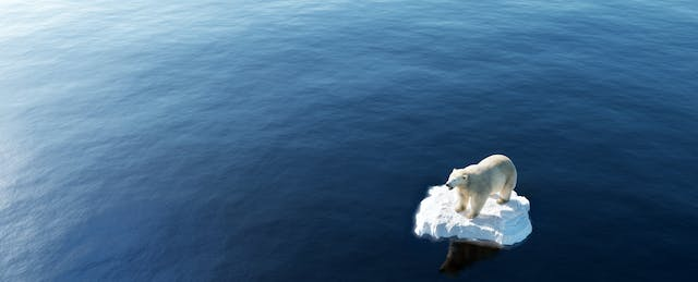 Climate Change Is the Ultimate Teachable Moment