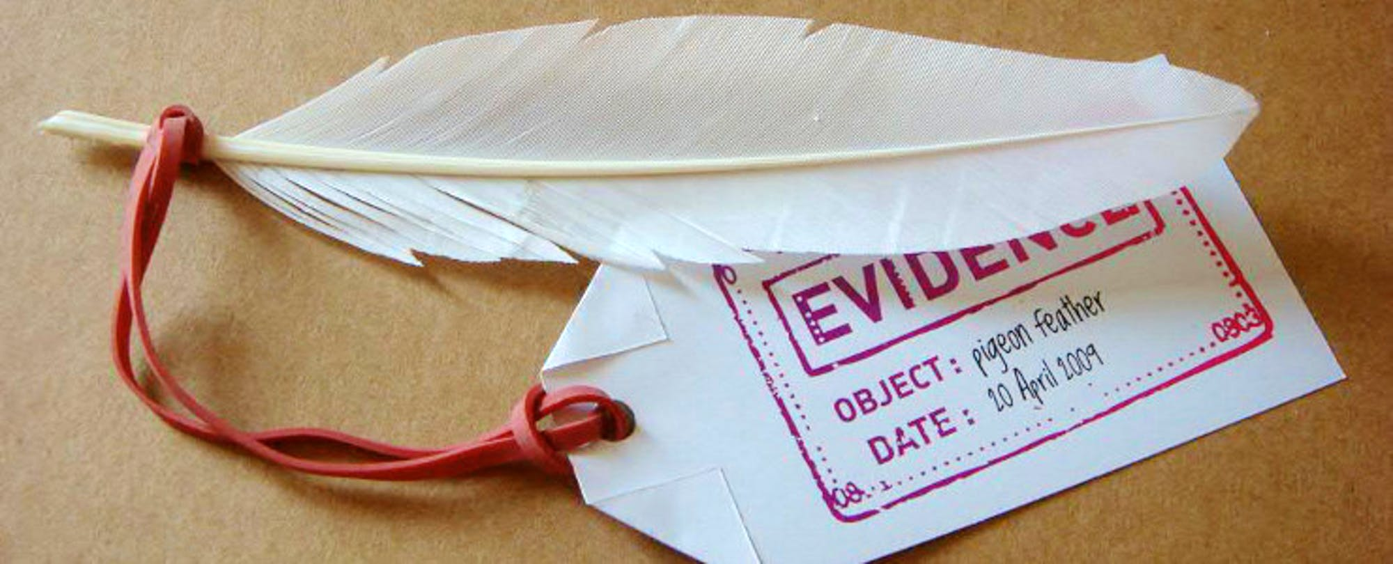 'Expanding Evidence' Report Tempers Research With Design