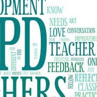 Seeking: A Taxonomy for Professional Development