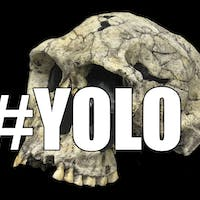 Say YOLO to Studying Solo: The Power of Collaborative Learning