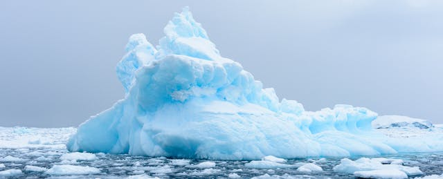 Personal Statements  2016: Icebergs and Other (Movie) Villains of My Education