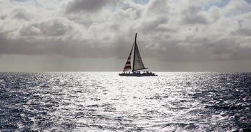 Sailing Through the Summer Brain Slump