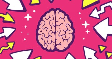 ​Brain Science and Education: How Much Should Teachers Know?