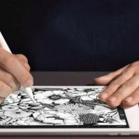 iPads Did Not Revolutionize Campus Teaching (But a Few Colleges Give Every Student One)