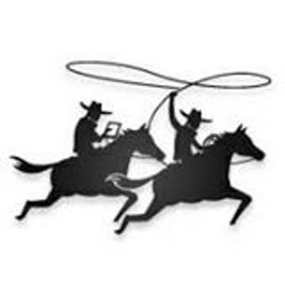 Digital Cowboys Consulting
