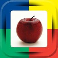 Link4fun Interactive Learning Books
